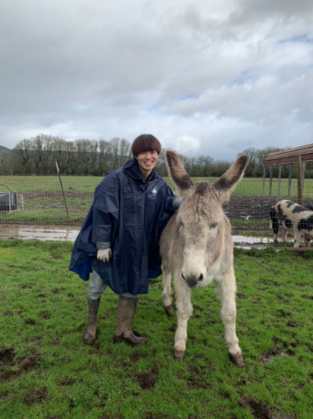 Rikuya posing with a donkey at a farm. It is an overcast day and Rikuya is wearing a blue rain with boots.